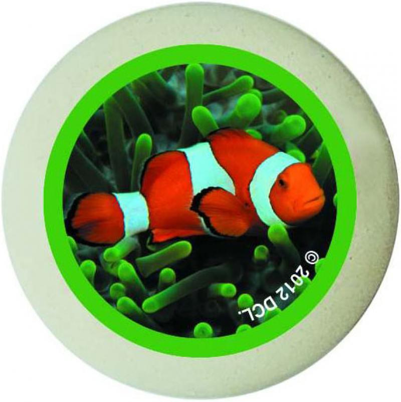 Ластик ACTION! ANIMAL PLANET круглый, белый с цветной печатью, блистер, 4 вида