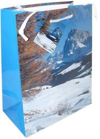 Пакеты подарочные бумажные ламинированные, 180X230X98 мм.|1