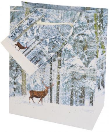Пакеты подарочные бумажные ламинированные, 111X137X62 мм.|1