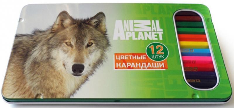 Набор цветных карандашей Action! Animal Planet 12 шт AP-ACP305-12 AP-ACP305-12 ластик action animal planet 1 шт круглый ap aer115 в ассортименте ap aer115