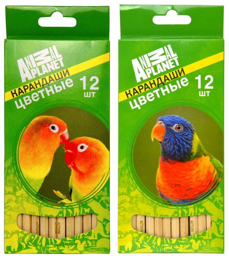 Набор цветных карандашей Action! Animal Planet 12 шт AP-ACP105-12 AP-ACP105-12 цены онлайн