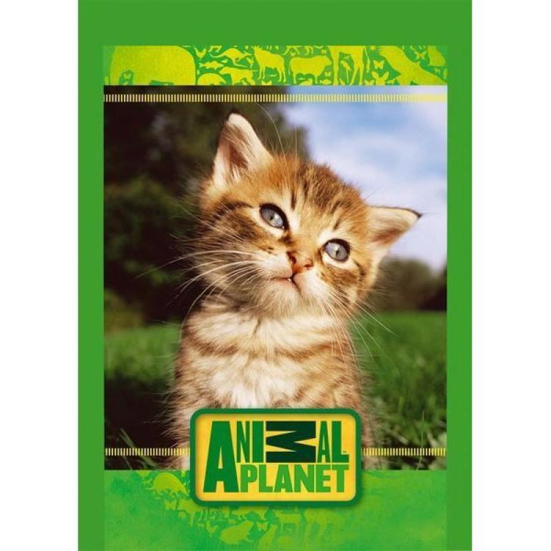 Блокнот Action! ANIMAL PLANET A5 40 листов AP-ANU-5/40-1 в ассортименте AP-ANU-5/40-1 цена