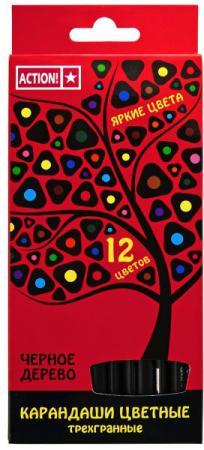 Набор цветных карандашей Action! Черное дерево ACP505-12 12 шт набор цветных карандашей 12 шт
