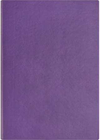 Ежедневник недатированный Index Spectrum ф. а5, кожзам, лин, ляссе, 256с, фиолетовый IDN121/A5/VL феникс ежедневник fenix plus джинс недатированный фиолетовый