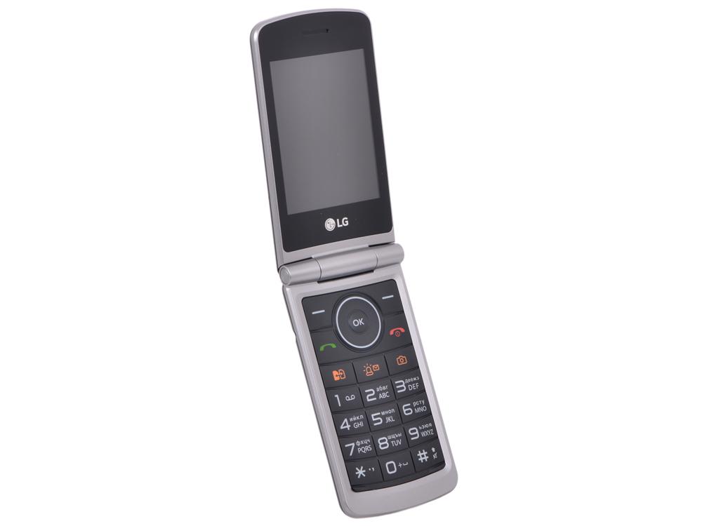 Мобильный телефон LG G360 титан раскладной 2Sim 3