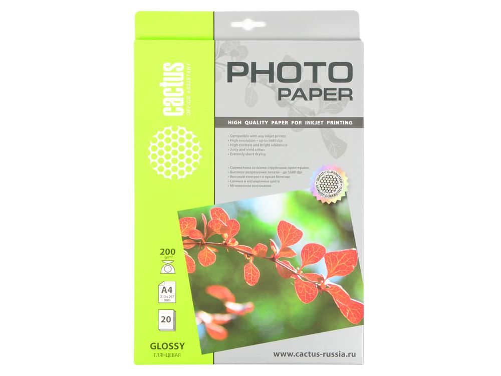 Фотобумага Cactus CS-GA420020 глянцевая А4 200 г/м2 20 листов фотобумага cactus cs ga420050 глянцевая а4 200 г м2 50 листов