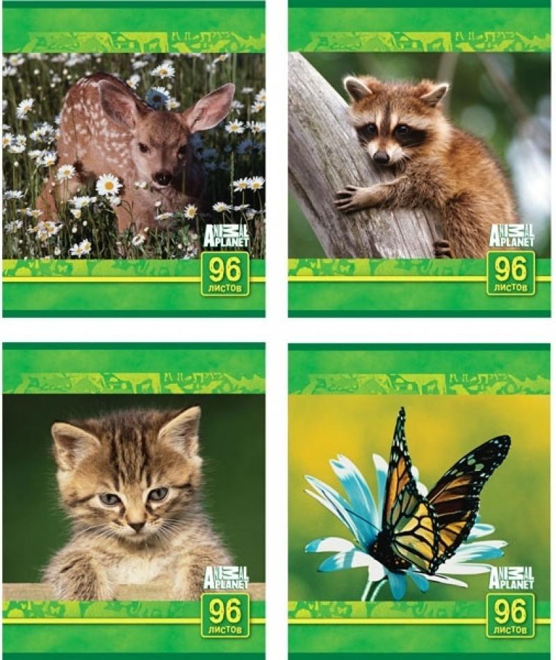 Тетрадь общая Action! Animal Planet 96 листов клетка скрепка AP-AN 9603/5 в ассортименте AP-AN 9603/ ластик action animal planet 1 шт круглый ap aer115 в ассортименте ap aer115