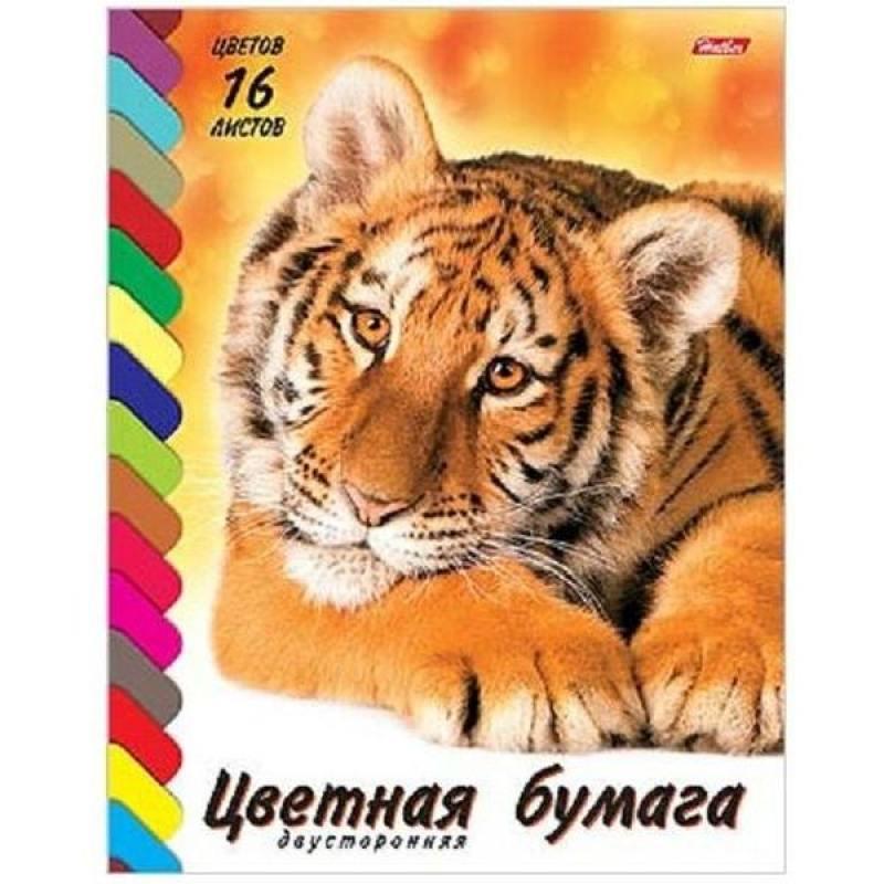 Цветная бумага Хатбер ТИГРЕНОК A4 16 листов 16Бц4 08394