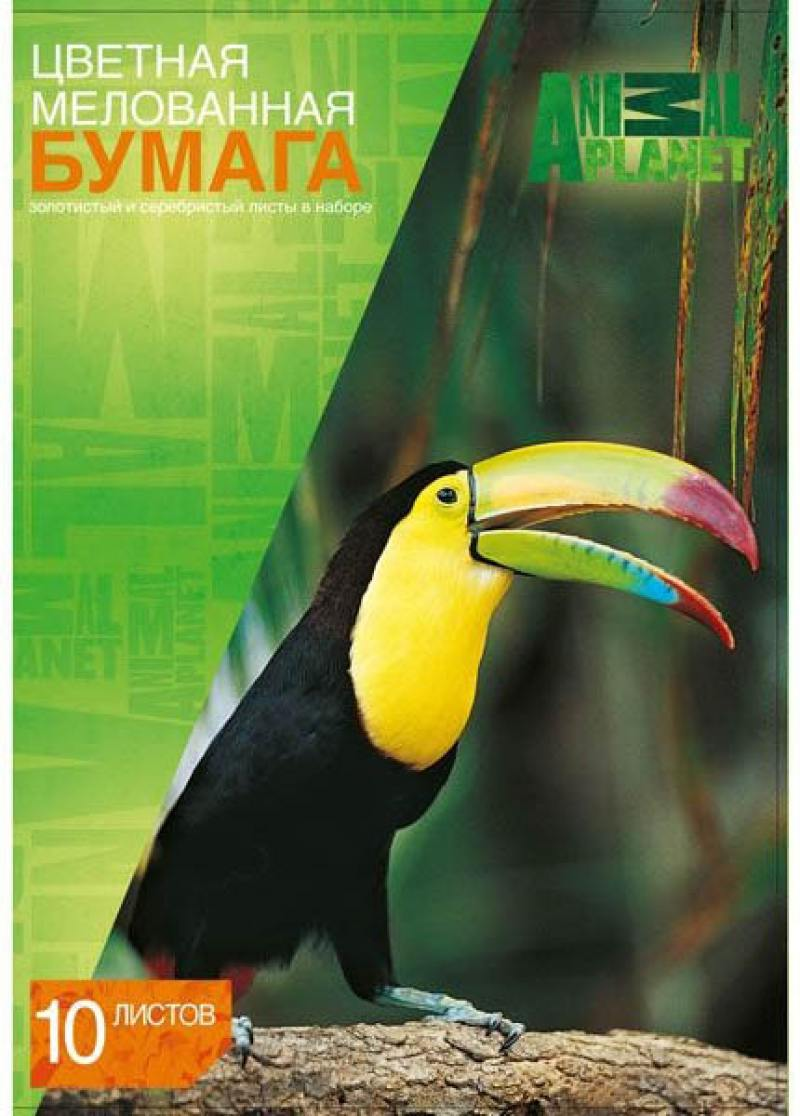 Цветная бумага Action! ANIMAL PLANET A4 10 листов AP-CCP-10/10 в ассортименте, мелованная