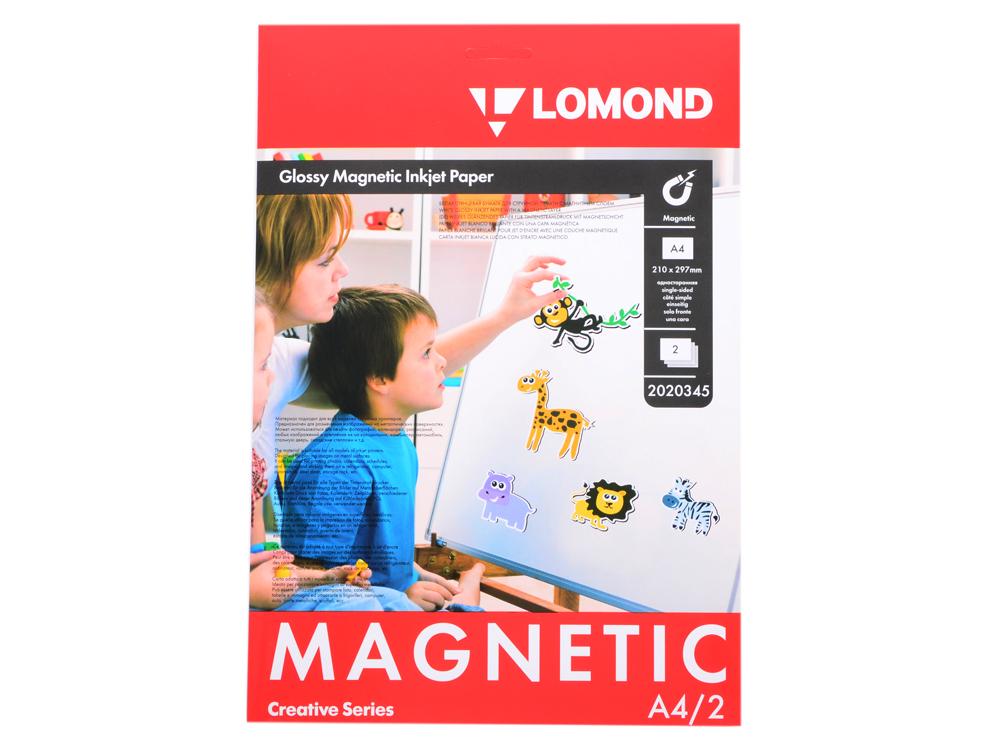 Фотобумага Lomond A4 660г/м2 глянцевая с магнитным слоем 2л 2020345 стоимость