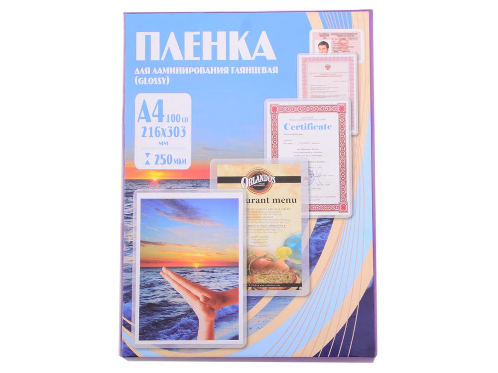 Плёнка для ламинирования Office Kit A4 (PLP12123-1) 216х303 мм, 250 мкм, глянцевая, 100 шт. цены