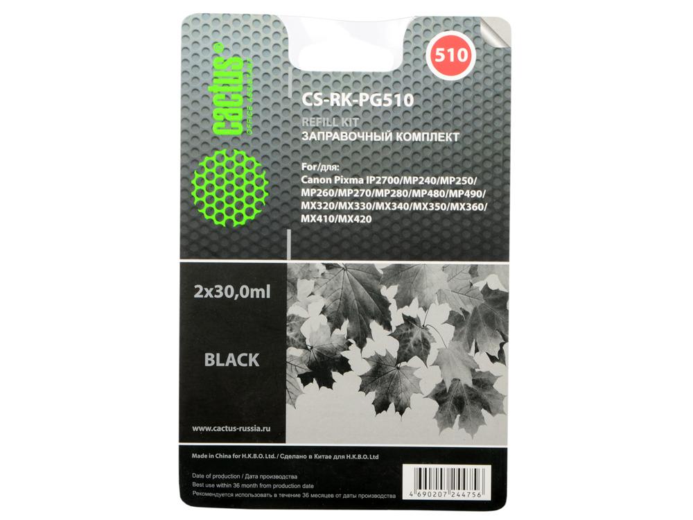 Заправка Cactus CS-RK-PG510 для Canon MP240/ MP250/MP260 2x30мл черный чернила cactus cs pg510 для canon pixma mp240 mp250 mp260 mp270 100мл черный cs i pg510