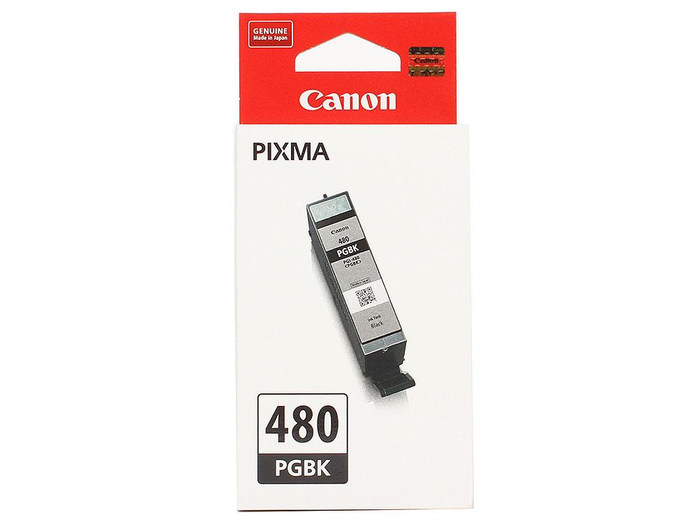 Картридж Canon PGI-480 PGBK EMB для TS6140/TS8140/TS9140/TR8540. Пигментный чёрный. 200 страниц. чернильный картридж canon pgi 29pm