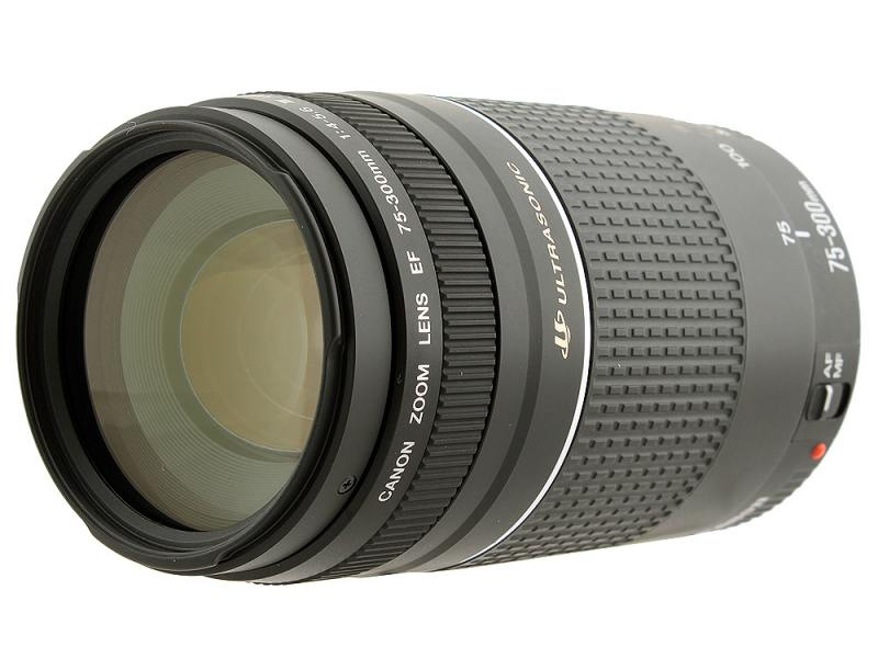 Объектив Canon EF 75-300 mm f/4-5.6 III USM 6472A012 объектив canon ef 28 300 mm f 3 5 5 6 l is usm