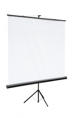 Экран на штативе Digis DSKC-1101 Kontur-C формат 1:1 (160*160) MW