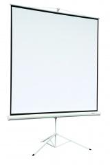Экран на штативе Digis DSKA-4305 Kontur-A формат 4:3 (180*240) MW