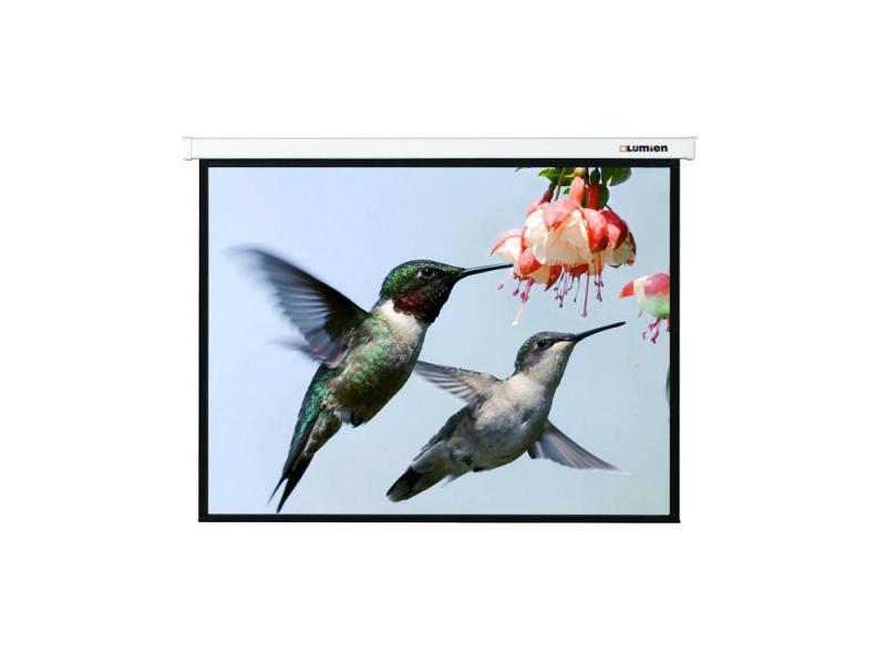Экран настенный Lumien Master Picture 162х280см Matte White FiberGlass LMP-100117
