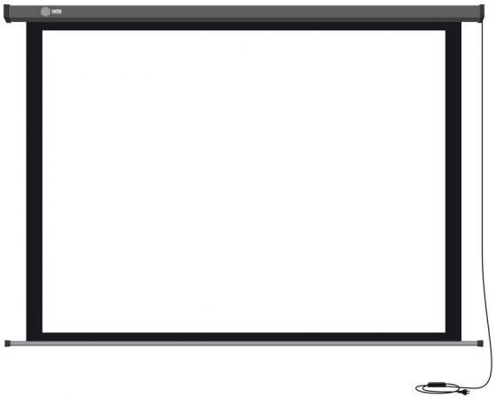 Экран настенный Cactus Professional Motoscreen CS-PSPM-206X274 206x274см 4:3