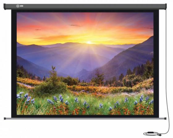 Экран настенный Cactus Professional Motoscreen CS-PSPM-149X265 149x265см 16:9