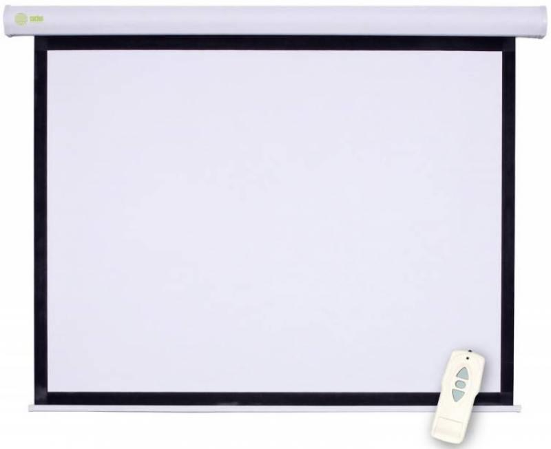Экран настенный Cactus Professional Motoscreen CS-PSPM-152X203 152x203см 4:3