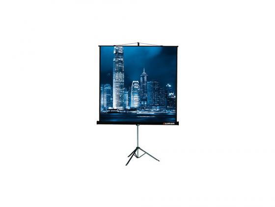 Экран на штативе Lumien Master View 127х127см Matte White FiberGlass LMV-100101 экран переносной на штативе elite screens yard master oms120h2 dual 149 x 266 см