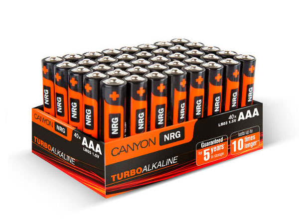 Батарейки CANYON LR03 (AAA) Alkaline (40шт) цены онлайн