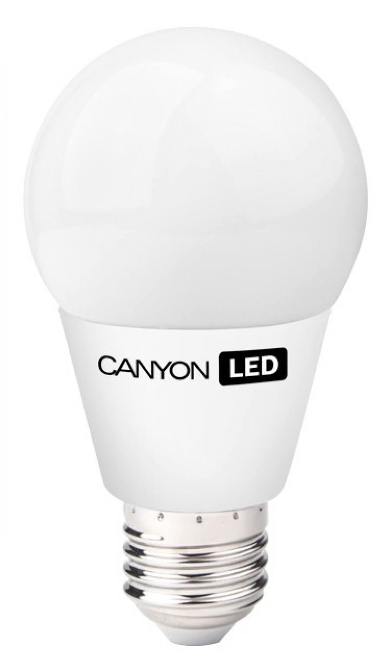 Лампа светодиодная шар Canyon E27 9W 2700K (AE27FR9W230VW)