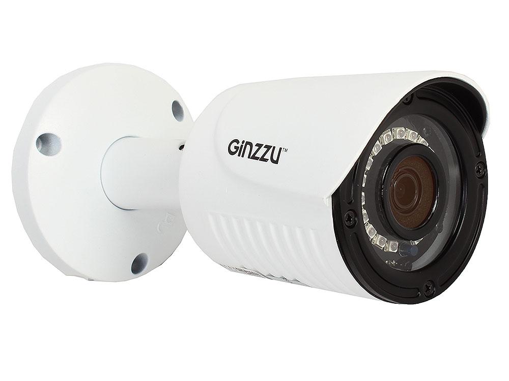 Камера Видеонаблюдения GINZZU HIB-2031S