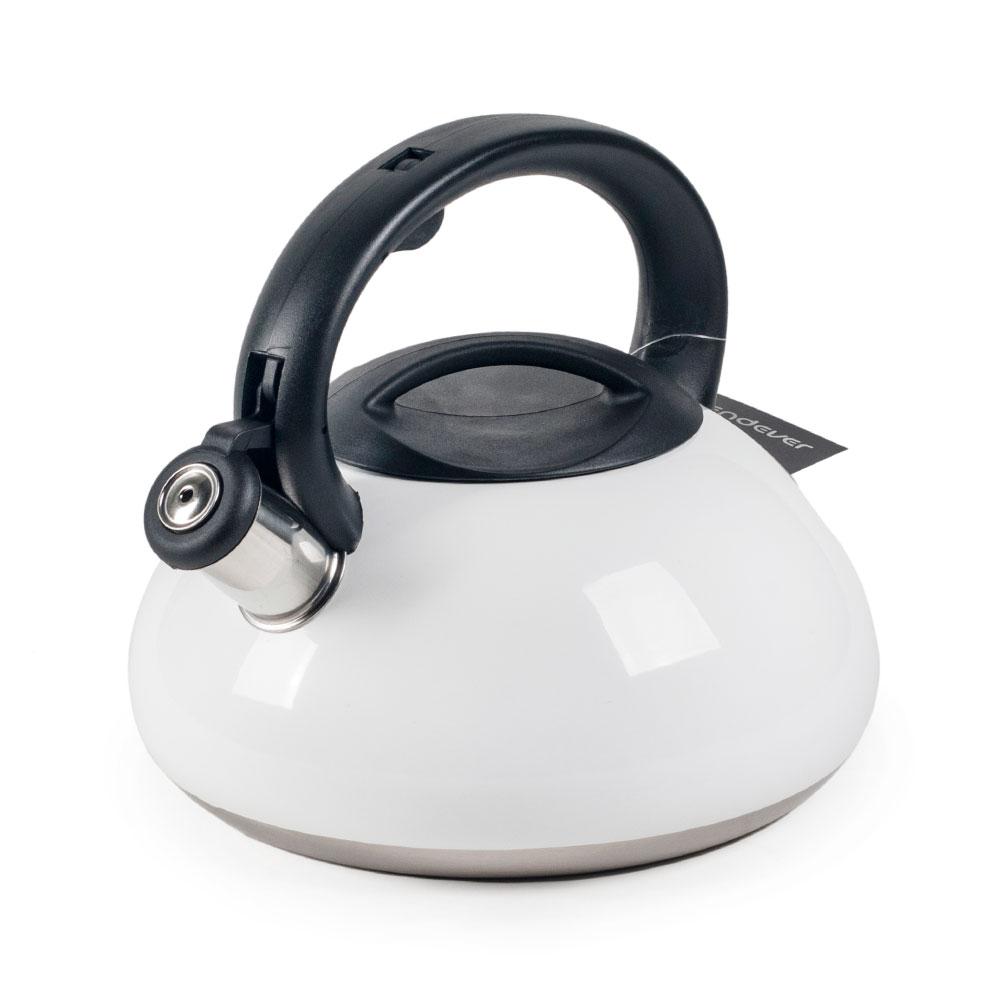 Чайник со свистком Endever Aquarelle-306 белый. 3 литра, сталь с термопокрытием