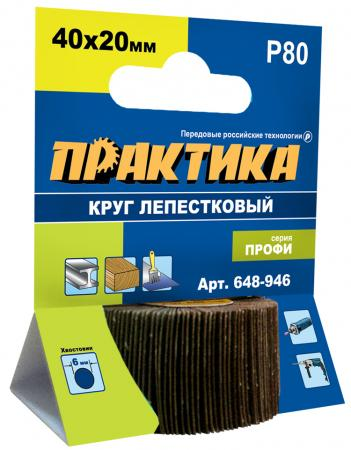 Круг лепестковый с оправкой Практика Профи 40х20мм P80 648-946