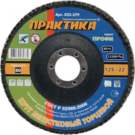 Круг лепестковый торцевой Практика 125мм Р80 032-379