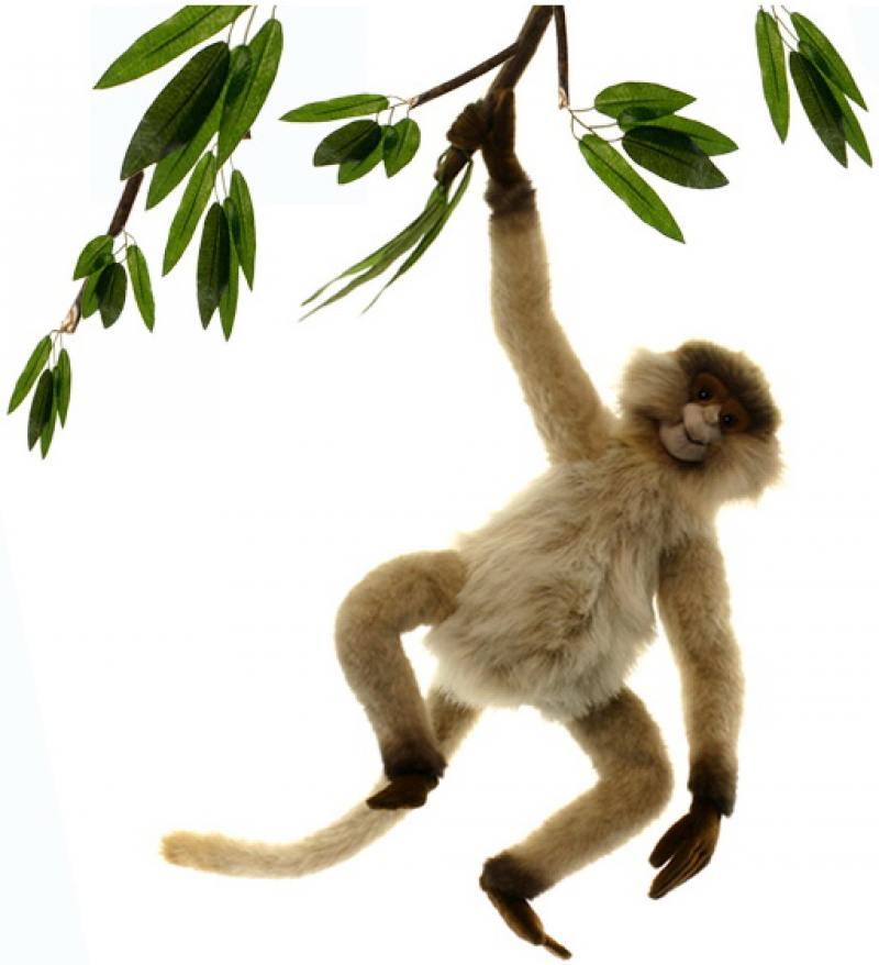 Фото Мягкая игрушка Hansa Паукообразная обезьяна, 44 см 3934П hansa мягкая игрушка обезьяна белка 25см