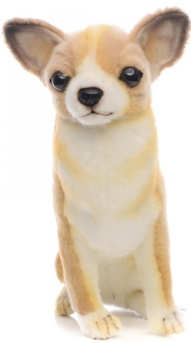 Мягкая игрушка Hansa Собака породы Чихуахуа, 31 см 6501 мягкие игрушки hansa собака породы бишон фризе 30 см