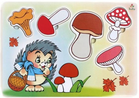 Развивающая игрушка: Рамка-вкладка Учим Грибы , Мастер игрушек, Конструкторы, мозаики, пазлы  - купить со скидкой