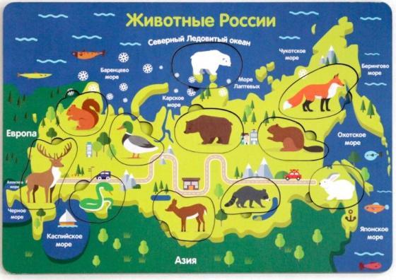 Купить Развивающая игрушка: Рамка-вкладка Животные России , Мастер игрушек, Конструкторы, мозаики, пазлы