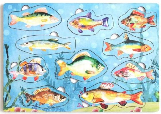 Купить Развивающая игрушка: Рамка-вкладка Рыбы России , Мастер игрушек, Конструкторы, мозаики, пазлы