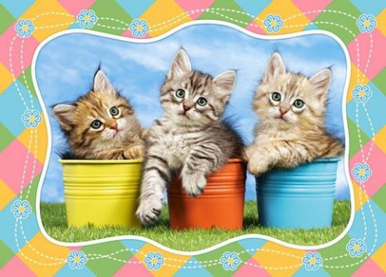 Пазлы 60 MIDI Три котенка