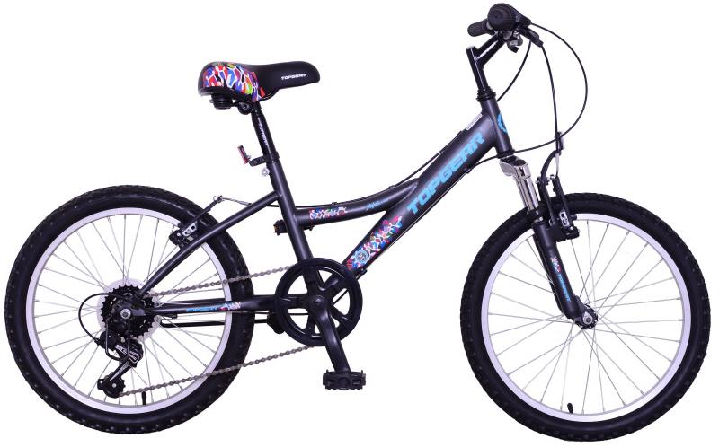 Велосипед двухколёсный Top Gear Mystic 20 черный ВН20166
