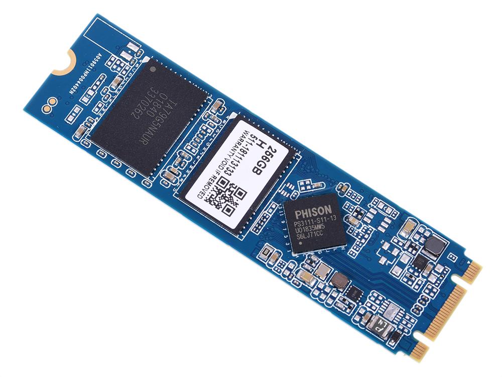 SB256GB-S11T-M2 цена и фото