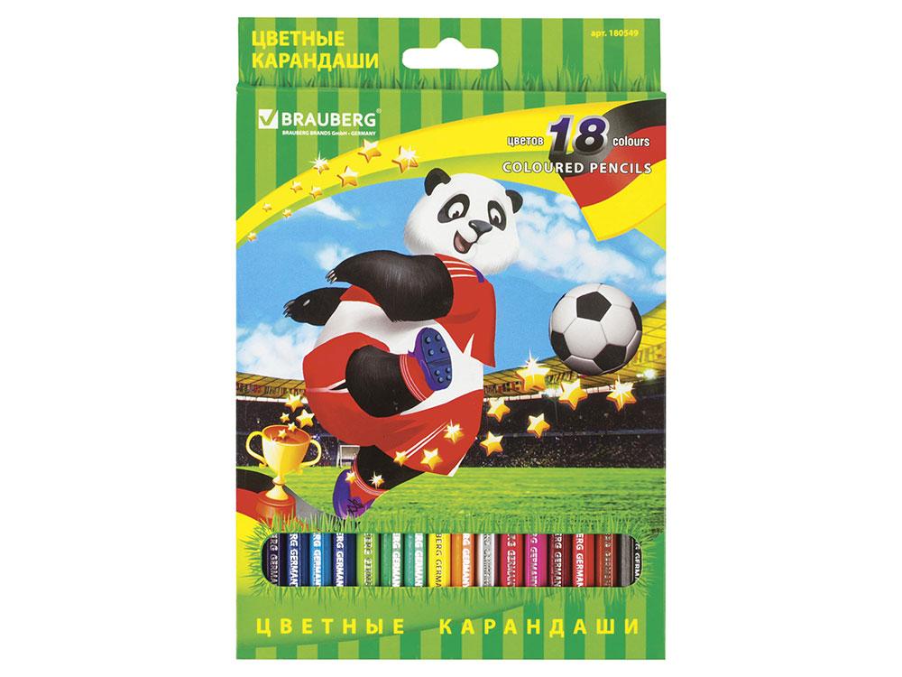 Набор цветных карандашей BRAUBERG Football match 18 шт 176 мм цена