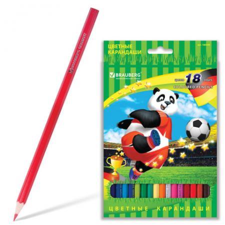 Набор цветных карандашей BRAUBERG Football match 18 шт 176 мм набор цветных карандашей action поезд динозавров 18 шт dt acp105 18 dt acp105 18