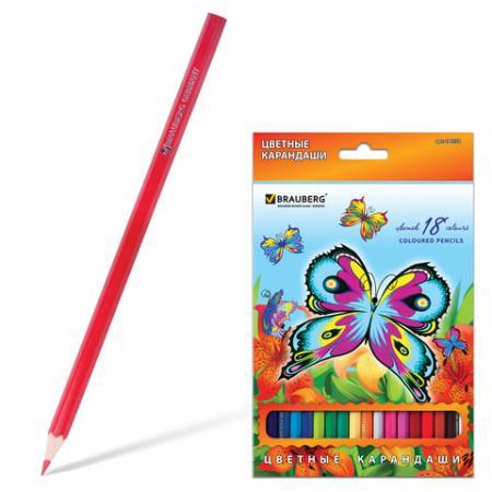 Набор цветных карандашей BRAUBERG Wonderful butterfly 18 шт 176 мм набор цветных карандашей action поезд динозавров 18 шт dt acp105 18 dt acp105 18