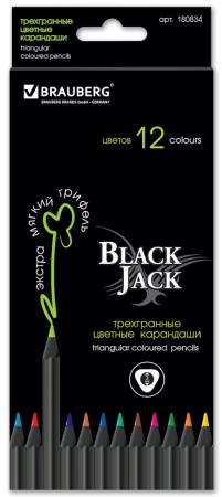 Набор цветных карандашей BRAUBERG Black Jack 12 шт 176 мм набор цветных карандашей transformers prime 12 шт
