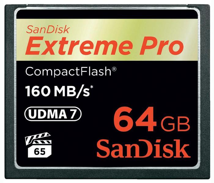 SDCFXPS-064G-X46 стоимость