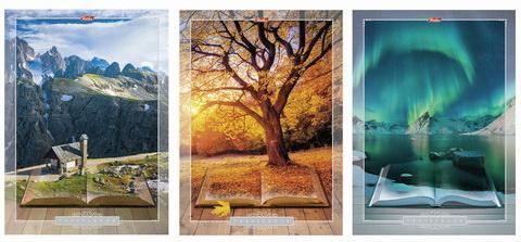 Фото - Тетрадь 80 л., А4 HATBER, клетка, обложка мелованный картон, Книга странствий тетрадь 80 л а4 hatber клетка выборочный лак аквалайф
