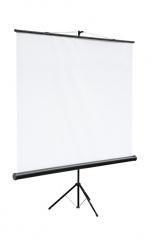 цена на Экран на штативе Digis DSKC-1102 Kontur-C формат 1:1 (180*180) MW