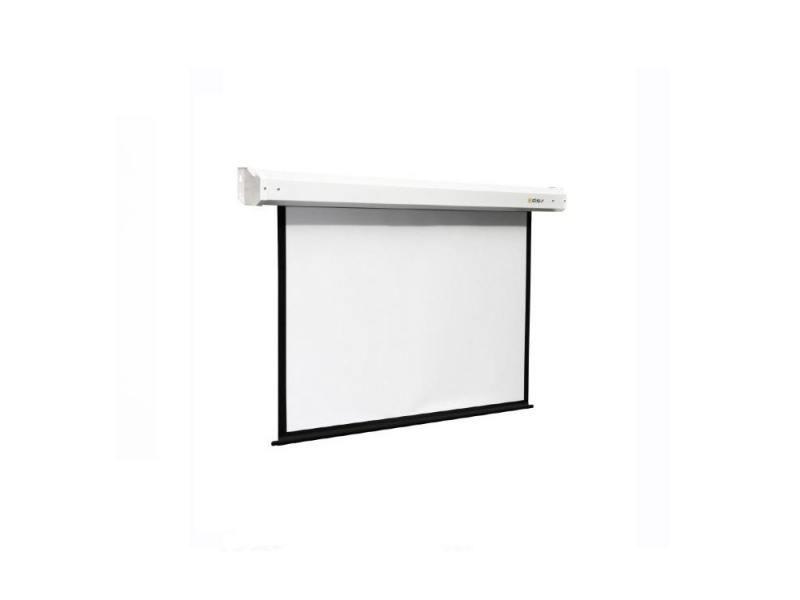цены на Экран настенный ScreenMedia Economy 180х180см SEM-1103