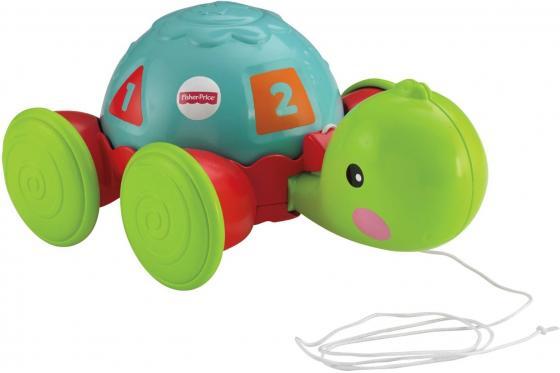 Развивающая игрушка Fisher Price Обучающая черепашка на колесиках Y8652 glorix чистящее средство для пола деликатные поверхности 1л